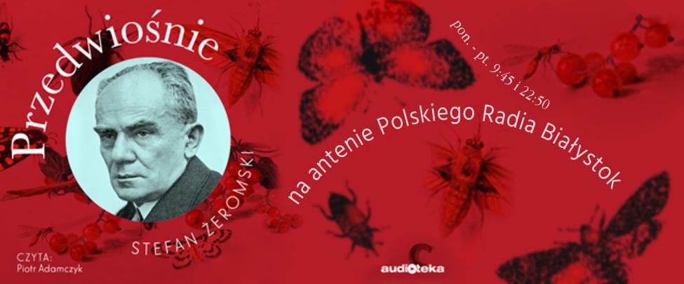 Opowieść o buncie, miłości i burzliwej historii młodego człowieka uciekającego z ogarniętego rewolucją Baku do nieznanej Polski, gdzie jest świadkiem zmian politycznych i narodzin państwa.