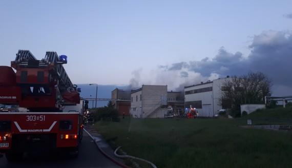 Pożar hurtowni sztucznych kwiatów w Białymstoku, fot. Edyta Wołosik