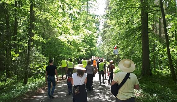 Ekolodzy w Puszczy Białowieskiej sprzeciwiają się jej wycince, kontrmanifestację zorganizowali mieszkańcy Hajnówki, fot. Ryszard Minko