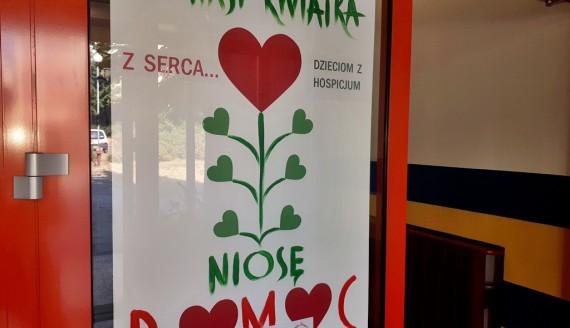 """""""Zamiast kwiatka, niosę pomoc"""", fot. Edyta Wołosik"""
