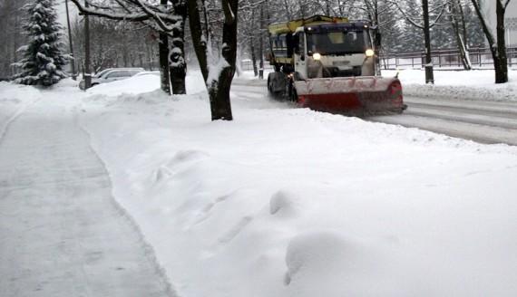 Fot. Katarzyna Cichoń