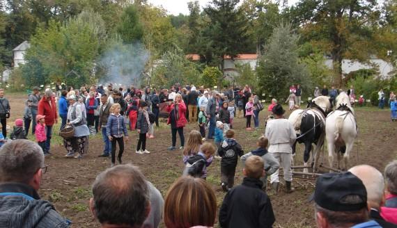 """Festyn rodzinny """"Jesień w polu i zagrodzie"""" w Ciechanowcu, fot. Adam Dąbrowski"""