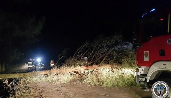 Ścięte drzewo na drodze wojewódzkiej pomiędzy Balikami a Ptakami, źródło: OSP Nowogród