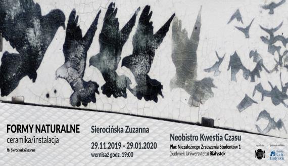 """""""Formy naturalne"""" Zuzanny Sierocińskiej, źródło: mat. pras."""