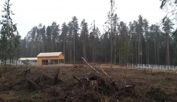 W Kopnej Górze w Puszczy Knyszyńskiej powstaje zagroda pokazowa dla żubrów, fot. Wojciech Szubzda
