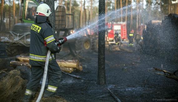 Kilkudziesięciu strażaków walczyło z pożarem lasu w powiecie kolneńskim, fot. Paweł Wądołowski