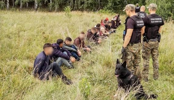 Nielegalni migranci zatrzymani na polsko - białoruskiej granicy , źródło: www.podlaski.strazgraniczna.pl