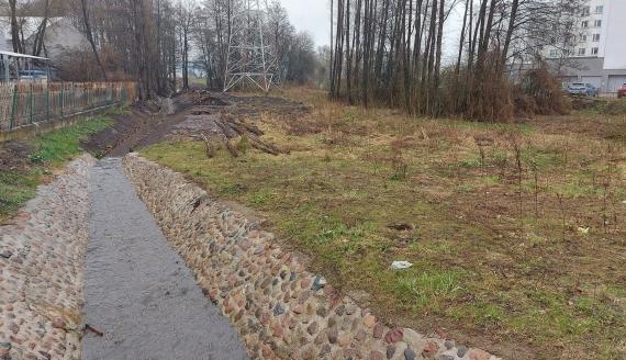 Fragment miejskiego rowu przy Alei Tysiąclecia w Białymstoku, fot. Ryszard Minko