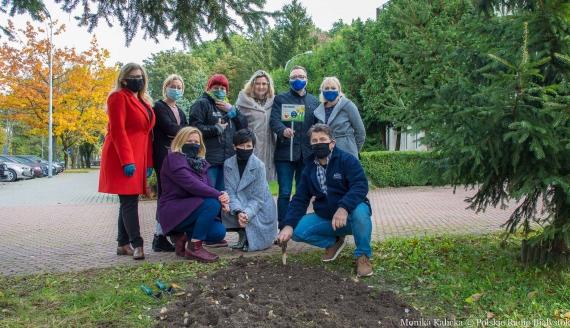 """Sadzimy """"Pole nadziei"""" przed siedzibą Radia Białystok, fot. Monika Kalicka"""