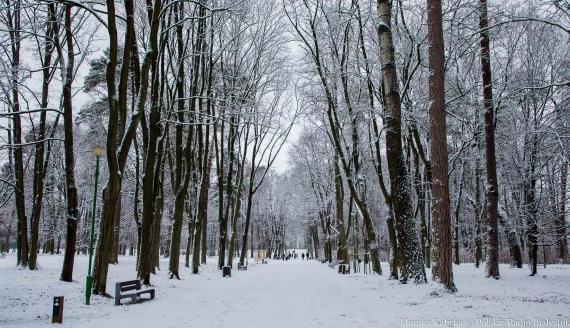 Zimowy Białystok, fot. Monika Kalicka