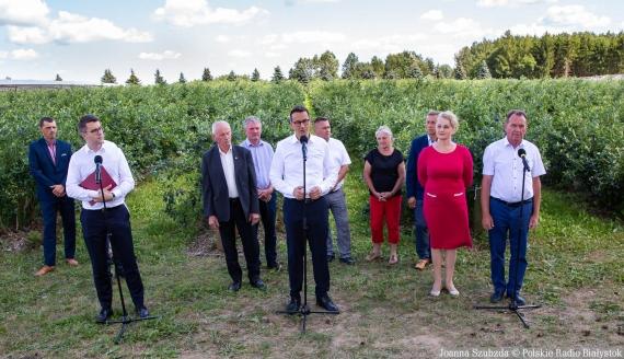 Wizyta Mateusza Morawieckiego na plantacji borówek w Białousach, fot. Joanna Szubzda