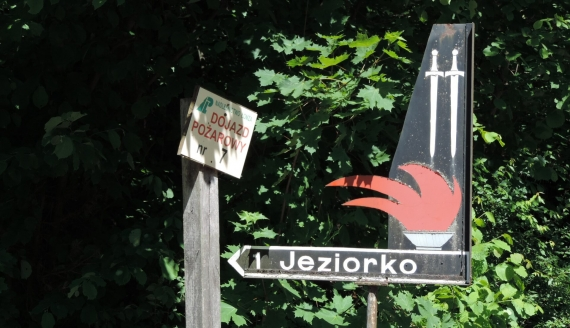 Cmentarz leśny w Jeziorku, fot. Adam Dąbrowski
