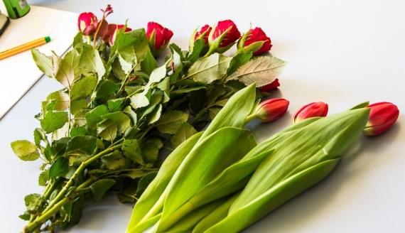 Kwiaty cięte, fot. Monika Kalicka